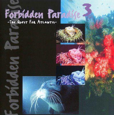 Tiësto compilation: Forbidden Paradise 3