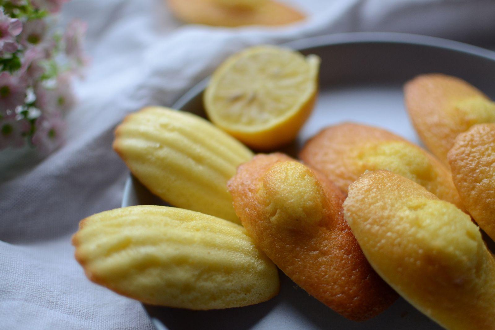 Madeleines au citron et son glaçage