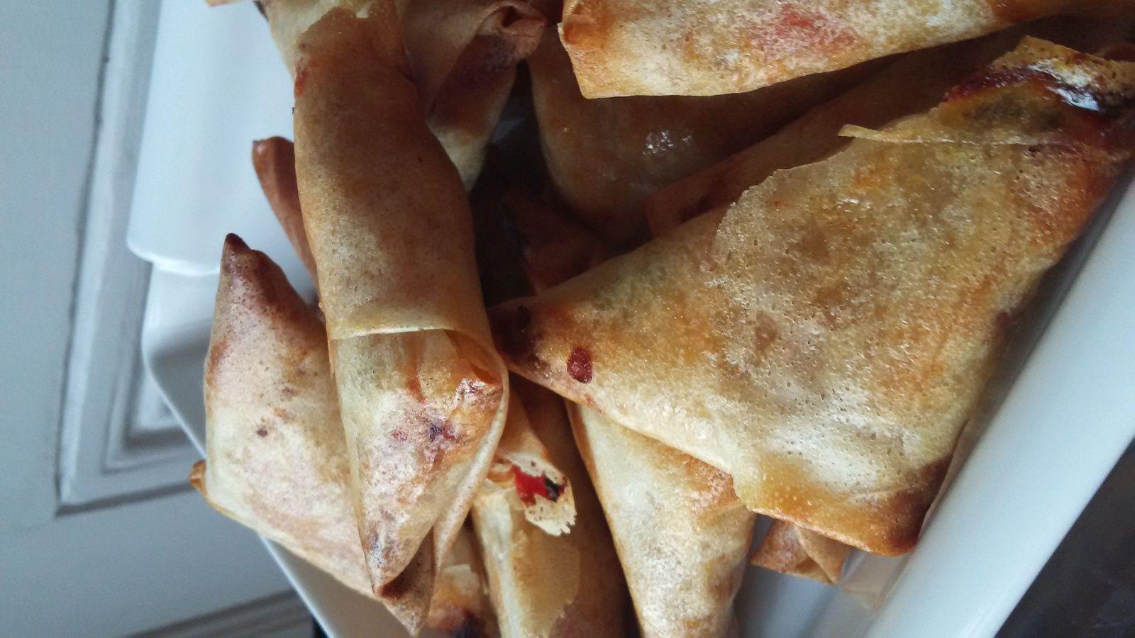 Samossas poulet / oignons / tomates / coriandre