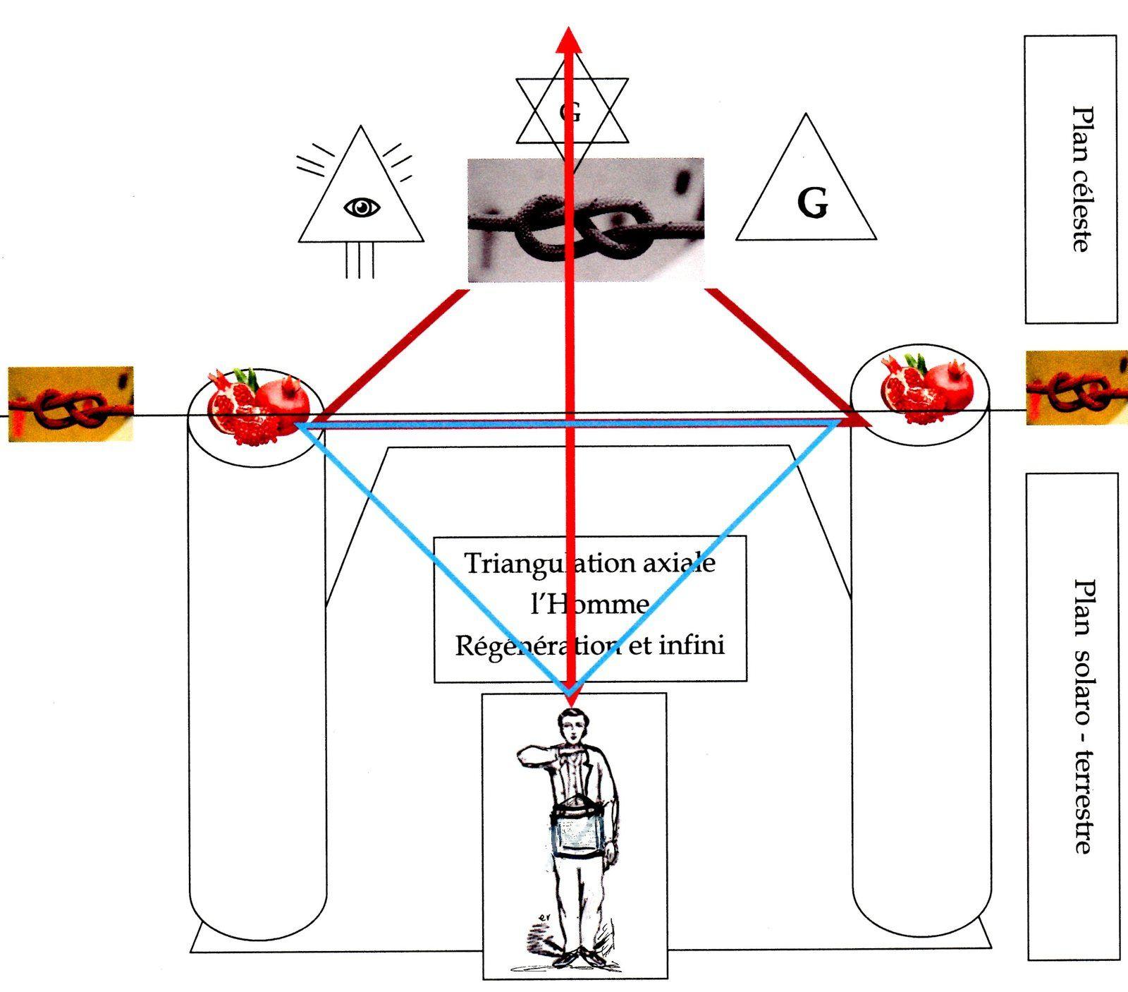 Dynamique symbolique des Colonnes