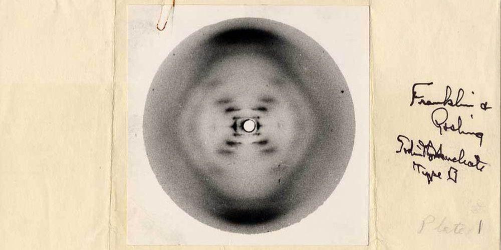 La mystérieuse photo 51 de Rosalind Franklin