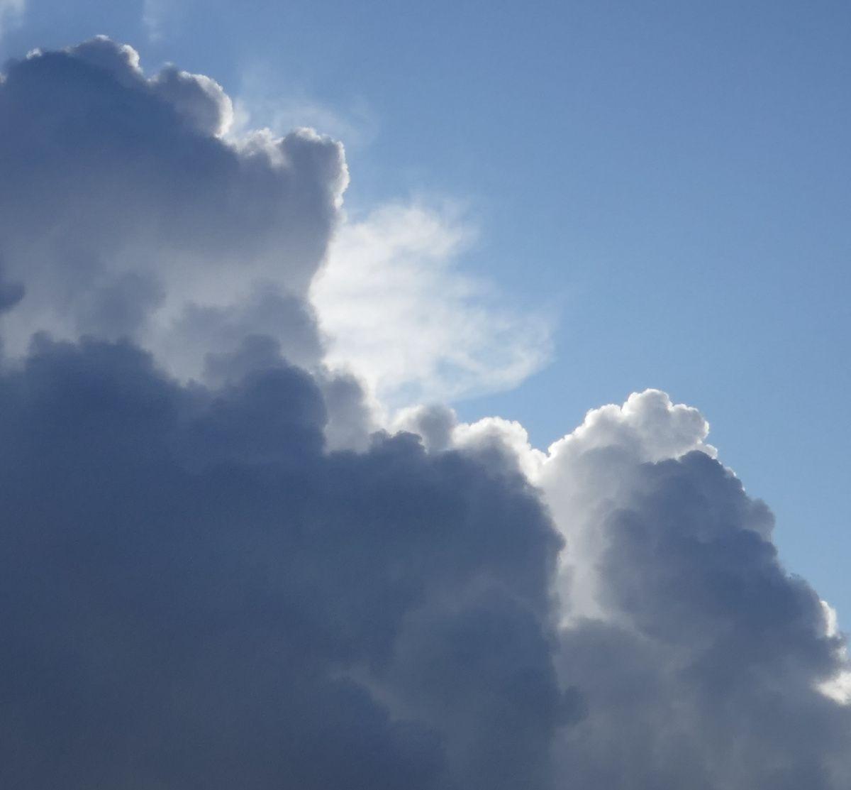 Quatre mouettes traversent le ciel...