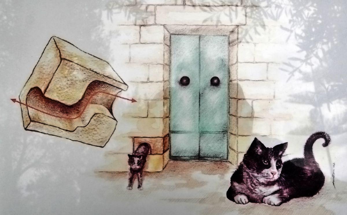 """Dans la série """"Se souvenir d'un voyage c'est encore voyager"""" : les chats de l'île de Malte !"""