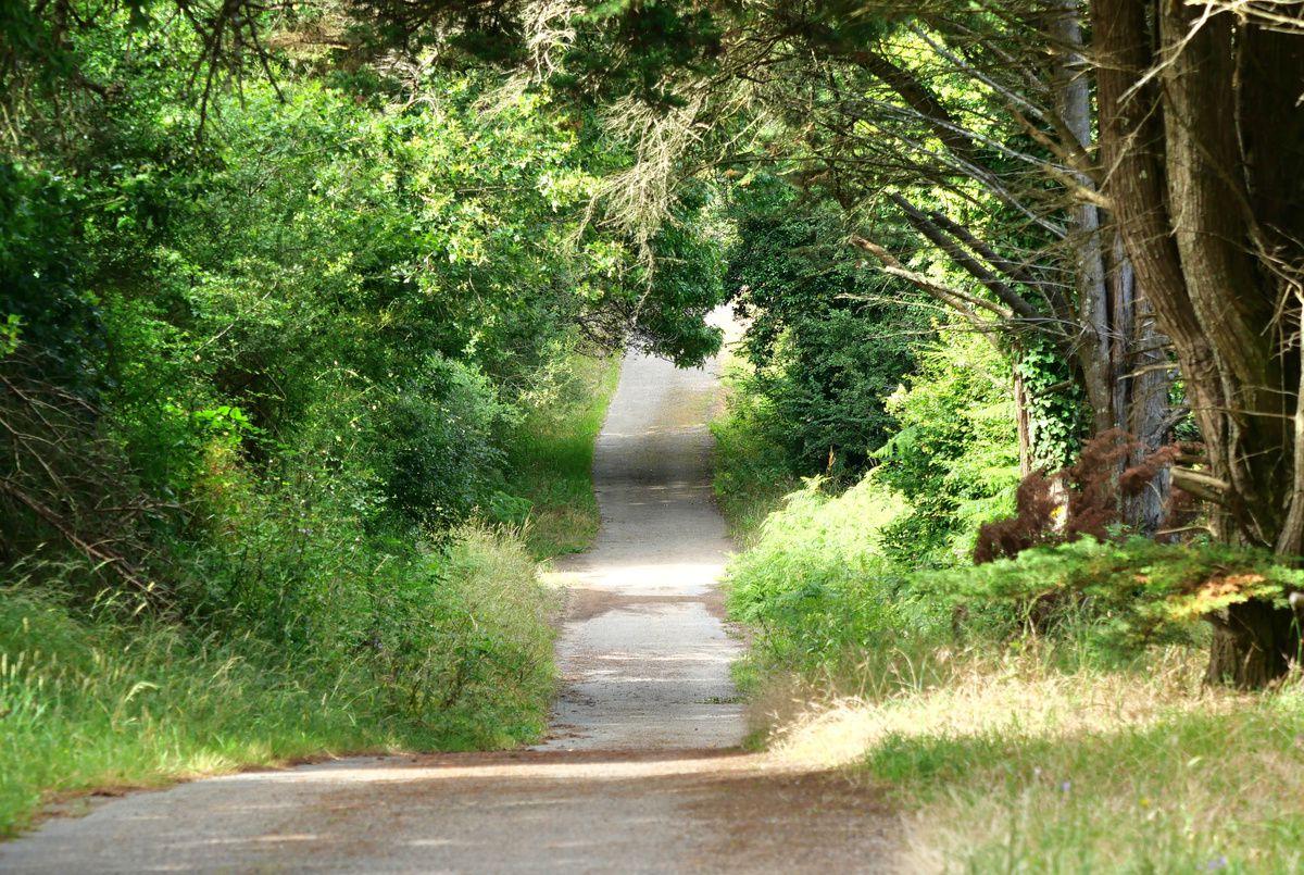 Merveilleux le chemin de Ker Bidet !