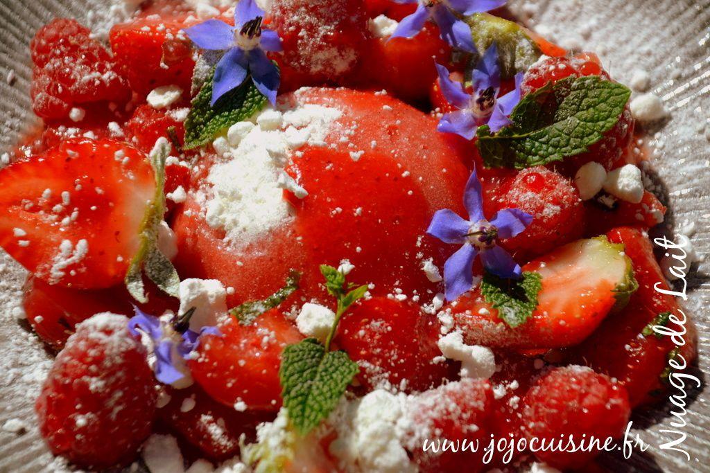 """Dômes Glacés Fraise/Banane et Meringue """"Recette Tupperware"""" pour un dessert glacé de saison"""
