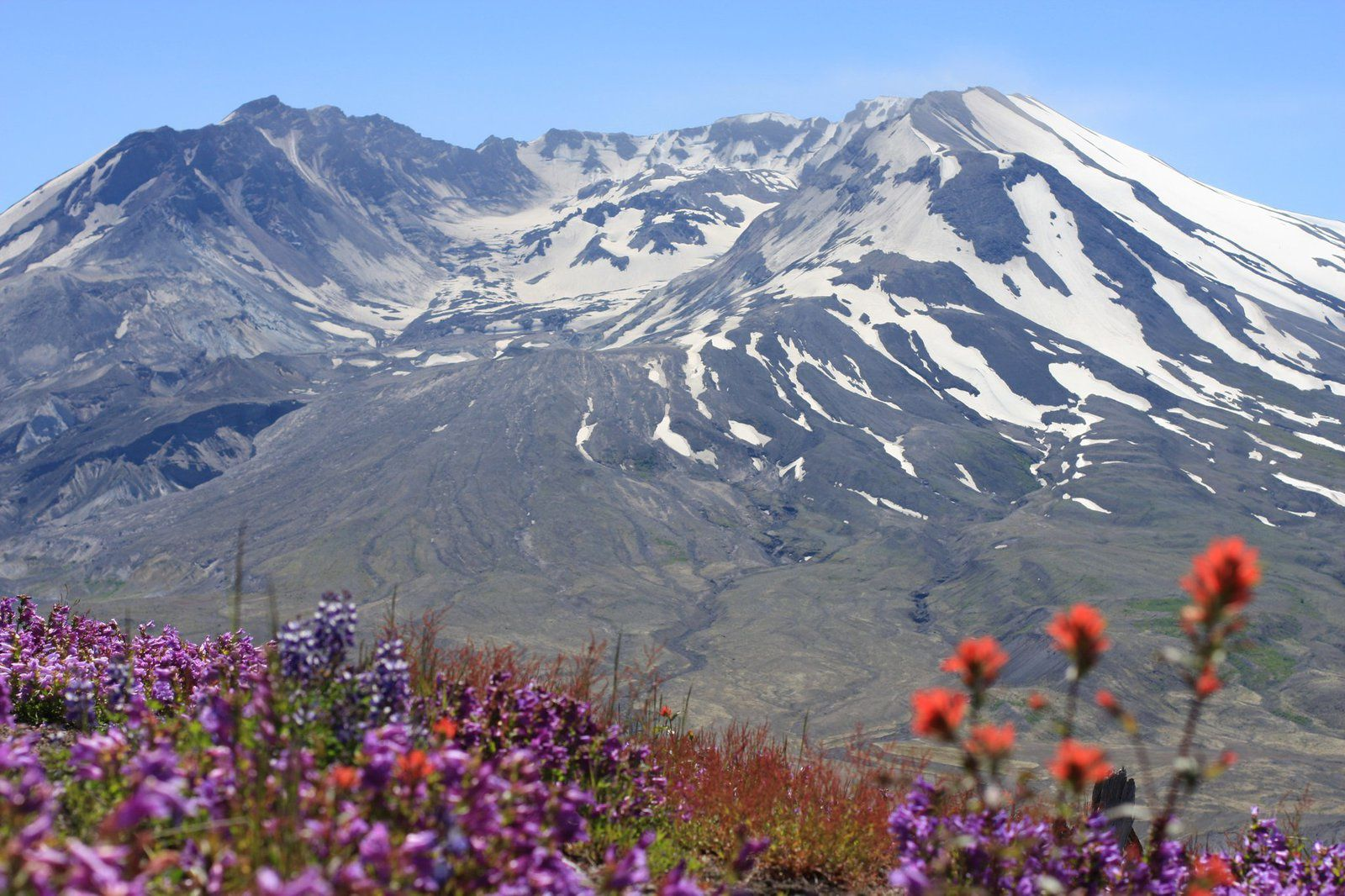 Le Mt St Helens vu de Johnston ridge - photo Nathan Garner /  MSHI