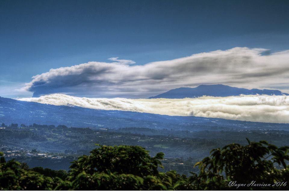 Turrialba- panache et nuage de cendres le 07.11.2016 -  Photographie par Wayne Harrison / Ovsicori