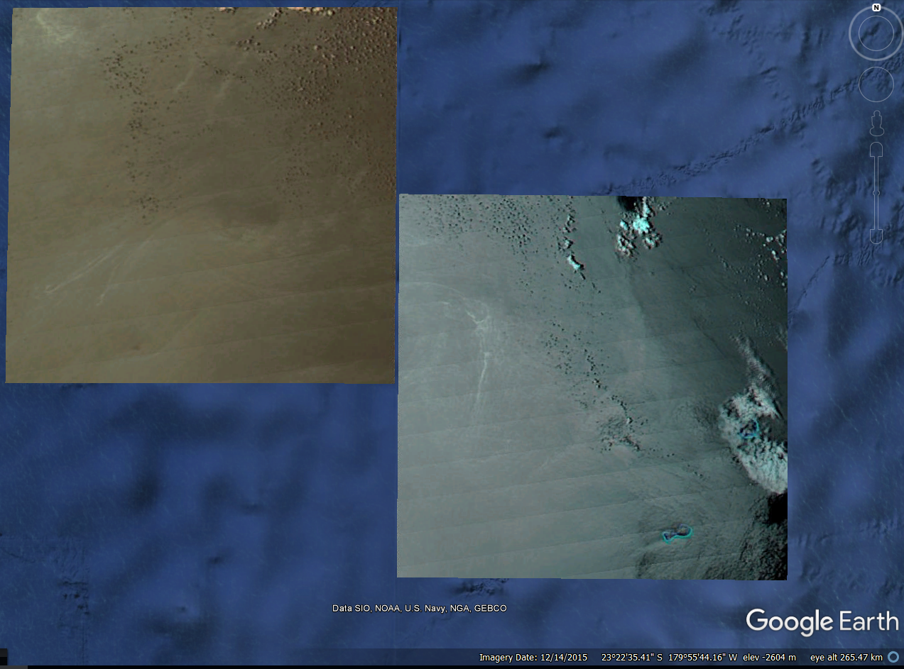 Location of the pumice rat, near Minerva Reef - doc. GeoNet