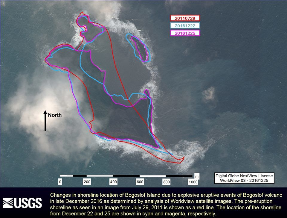 Changes in shoreline location of Bogoslof Island due to explosive eruptive events of Bogoslof volcano in late December 2016 as determined by analysis of Worldview satellite images. The pre-eruption shoreline as seen in an image from July 29, 2011 is shown as a red line. The location of the shoreline from December 22 and 25 are shown in cyan and magenta, respectively. The vent for the eruption is presumably located underwater, just off the northeast portion of the main island. Explosive eruptions were detected in monitoring data on December 20, 21 and 23, 2016 - Doc. AVO / Angeli Kim