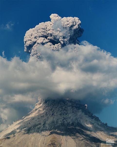 Colima -  panache, chute de blocs et coulée pyroclastique le 08.01.2017 / 16h17 loc. - photo Tapirofoto