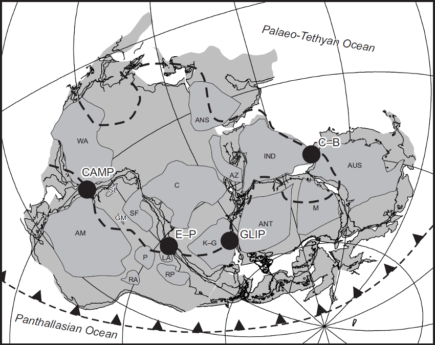 Gondwana reconstruction for 180 Ma (modified after Pankhurst & Vaughan 2009) showing major cratons and projected outline of the African LLSVP (heavy dashed line) from Torsvik et al. (2010). Major post-Permian large igneous province centres associated with the break-up of Gondwana are marked: CAMP – Central Atlantic Magmatic Province, 200 Ma (after Marzoli et al. 1999); GLIP – Gondwana Large Igneous Province, 180 Ma (after Storey & Kyle 1997) ; C–B – Comei–Bunbury LIP, 134 Ma (after Zhu et al. 2009); E–P – Etendeka–Paraná, 132 Ma (after Peate 1997). Craton labels are after Pankhurst & Vaughan (2009) and are as follows: ANS – Arabian–Nubian Shield; AM – Amazonia; ANT – Antarctica; AUS – Australian cratons; AZ – Azania; C – Congo; GM – Goias Massif; IND – Indian cratons; K-G – Kalahari–Grunehogna; LA – Luis Alves; M – Mawson; P – Paraná; RA – Rio Apa; RP – Rio de la Plata; SF – Sao Francisco; SL – San Luis; WA – West Africa. - carte modifiée d'après Pankhurst & Vaughan 2009./ Large igneous provinces
