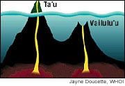 Schematic representation of Vailulu'u and his position on a chain of volcanoes - doc. WHOI.edu Schematic representation of Vailulu'u etsa position on a chain of volcanoes - doc. WHOI.edu