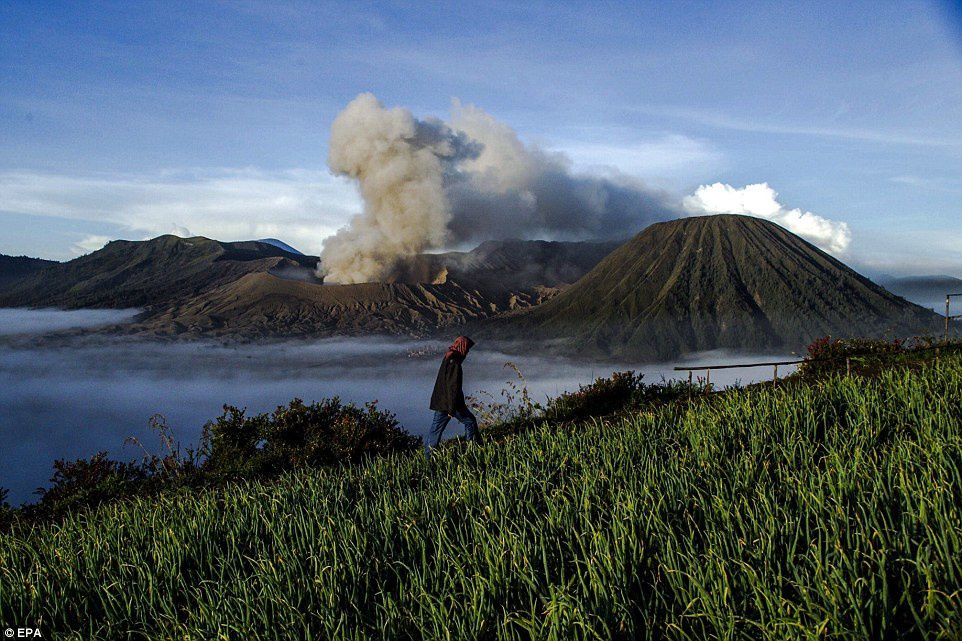 Bromo - EPA -  Fully Handoko - Daily Mail