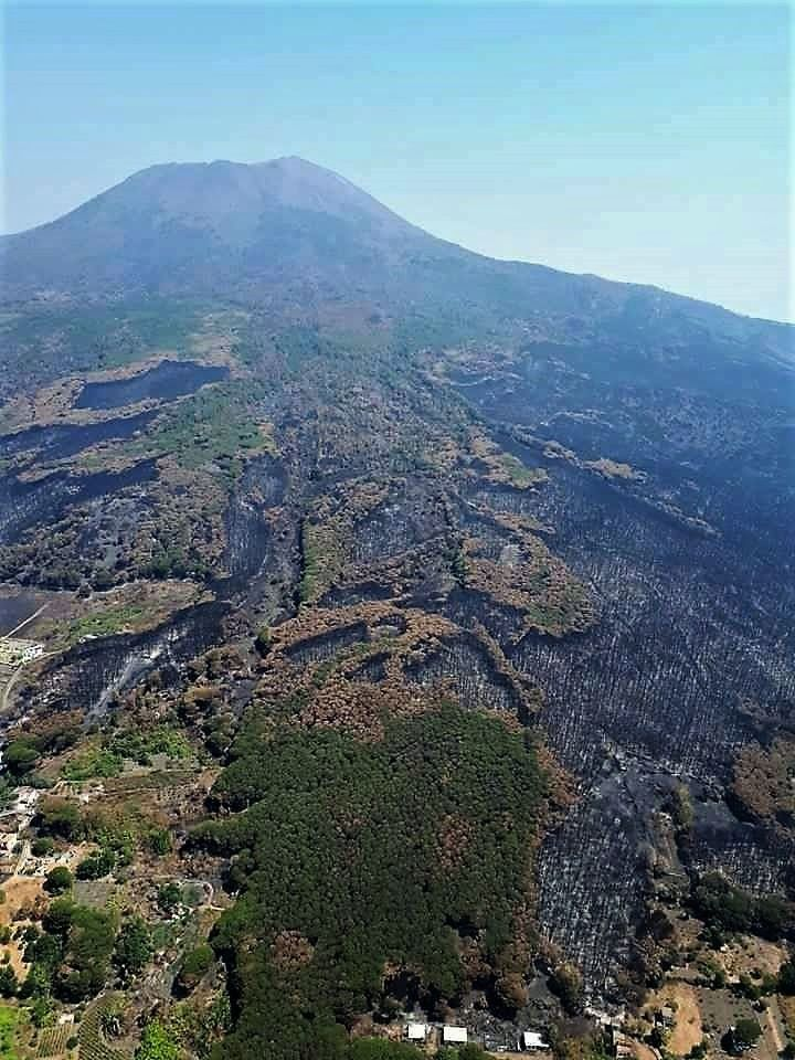 Vesuvius slopes after fires ... an environmental disaster - photo Anima Vesuviana