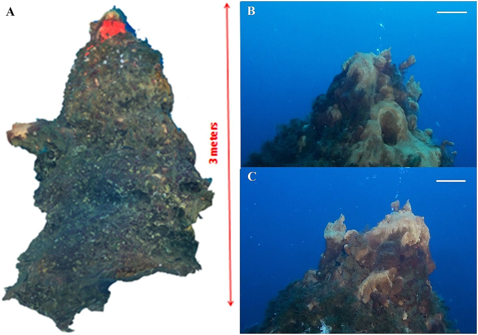 """Images of reconstructed chimneys, located in the """"Smoking Land"""" - A. HD-video reconstruction of the chimney - B. Underwater image of the anterior side - C. Underwater image of the posterior side, with yellowish deposits and the emission of bubbles - the scale bar is 20 cm for the foreground - Extract of the document cited in source."""