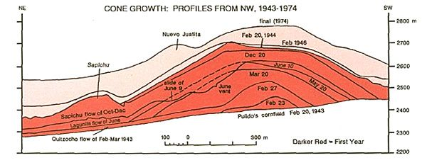 Sequential profile showing the progressive growth of Paricutin - in red, the profiles of the first year of activity - the dotted line shows the profile before the collapse of 09.06.1943- Note the position of the Sapichu parasite cone on the left - Doc. Luhr and Simkin 1993.