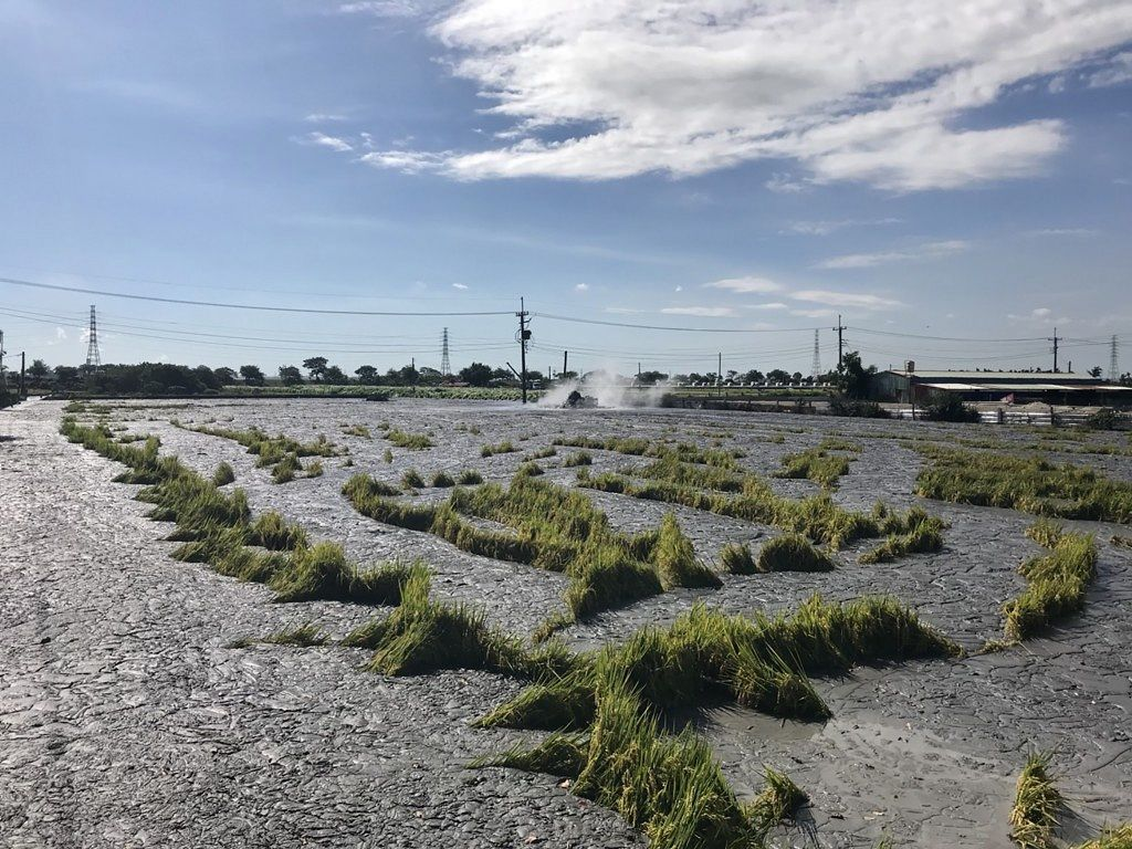 Mud volcano and fields covered by the mud in Wantan / Taiwan Township - Taiwan News photos