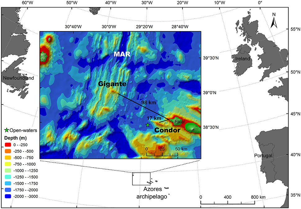 Location of Gigante seamount in relation to Faial Island in the Azores - Doc. www.frontiersin.org