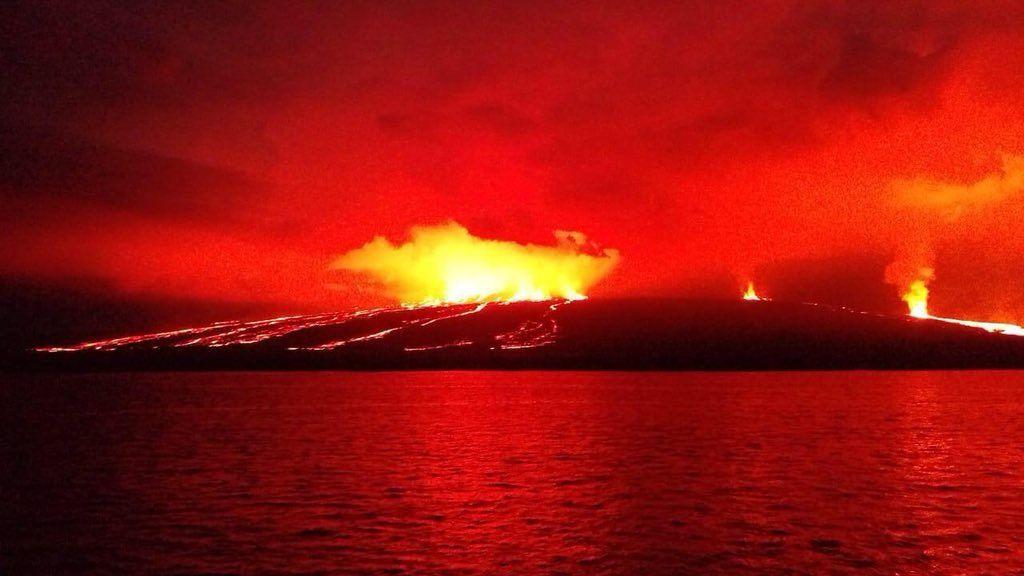 Sierra Negra - 26.06.2018 - photo Giancarlo Toti, Parque Galapagos