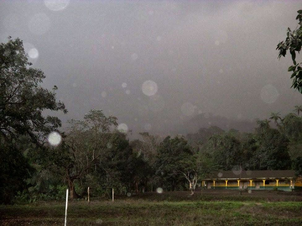Ambae - trees fall, coconut palms and houses are covered with greasy ash - photos Vanuatu Red Cross