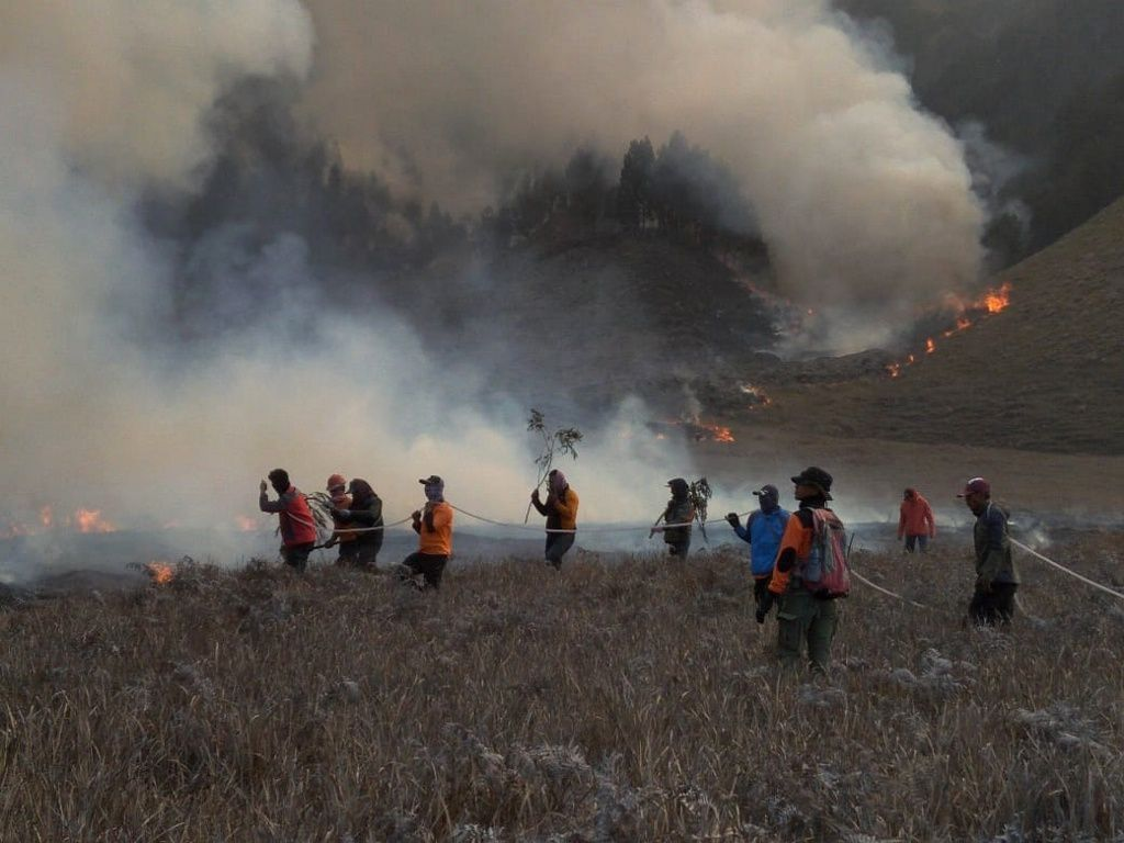 Bromo - Brush fires fought with weak means by BNPN teams