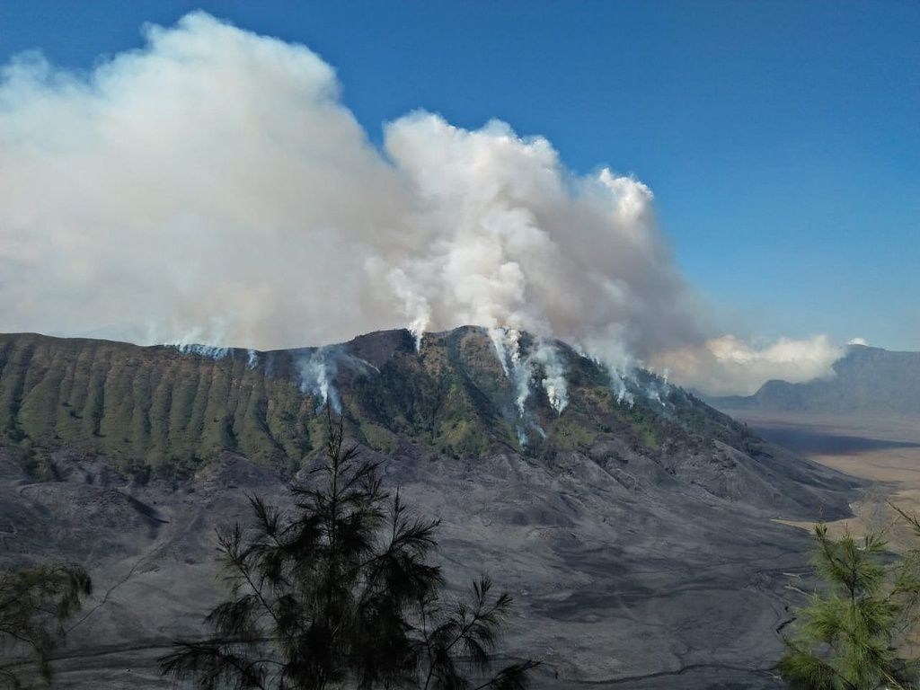 Bromo - fires on the flanks of the volcano between 01 and 03.09.2018 - photo BNPB