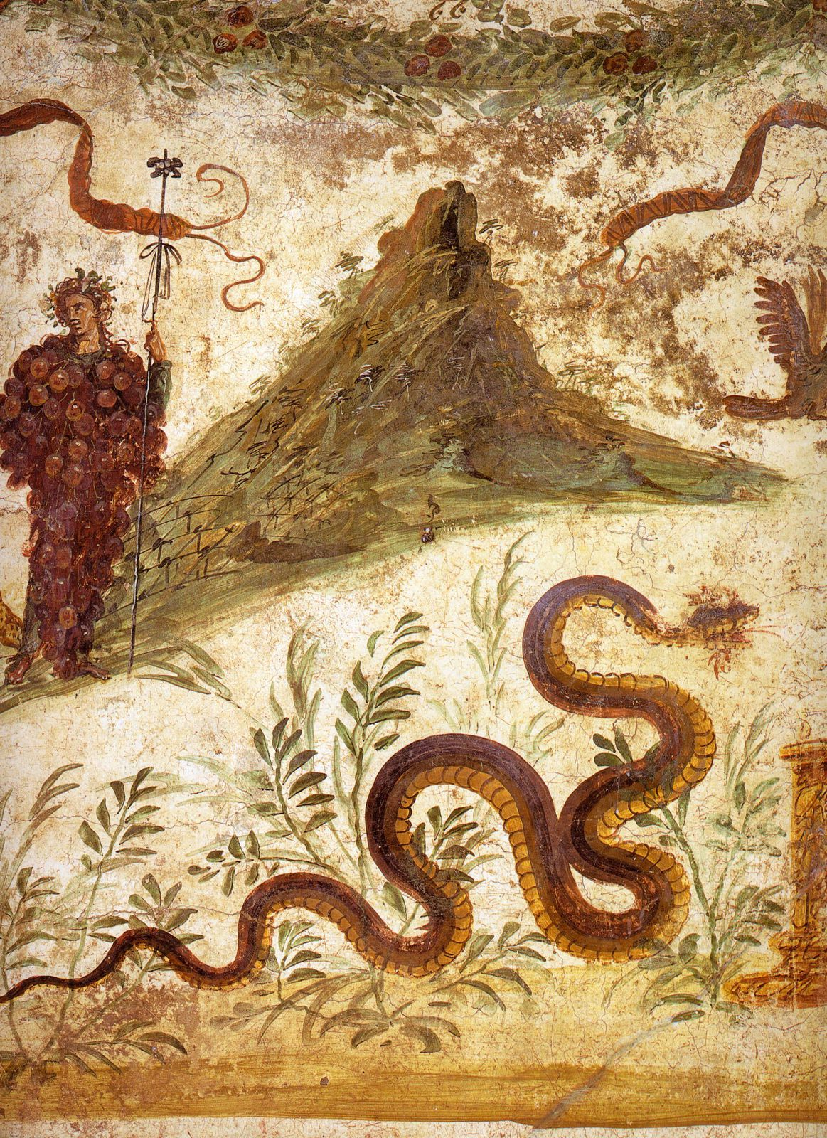 The Romans cultivated the vine on the slopes of Vesuvius - Pompeii - Casa del Centenario