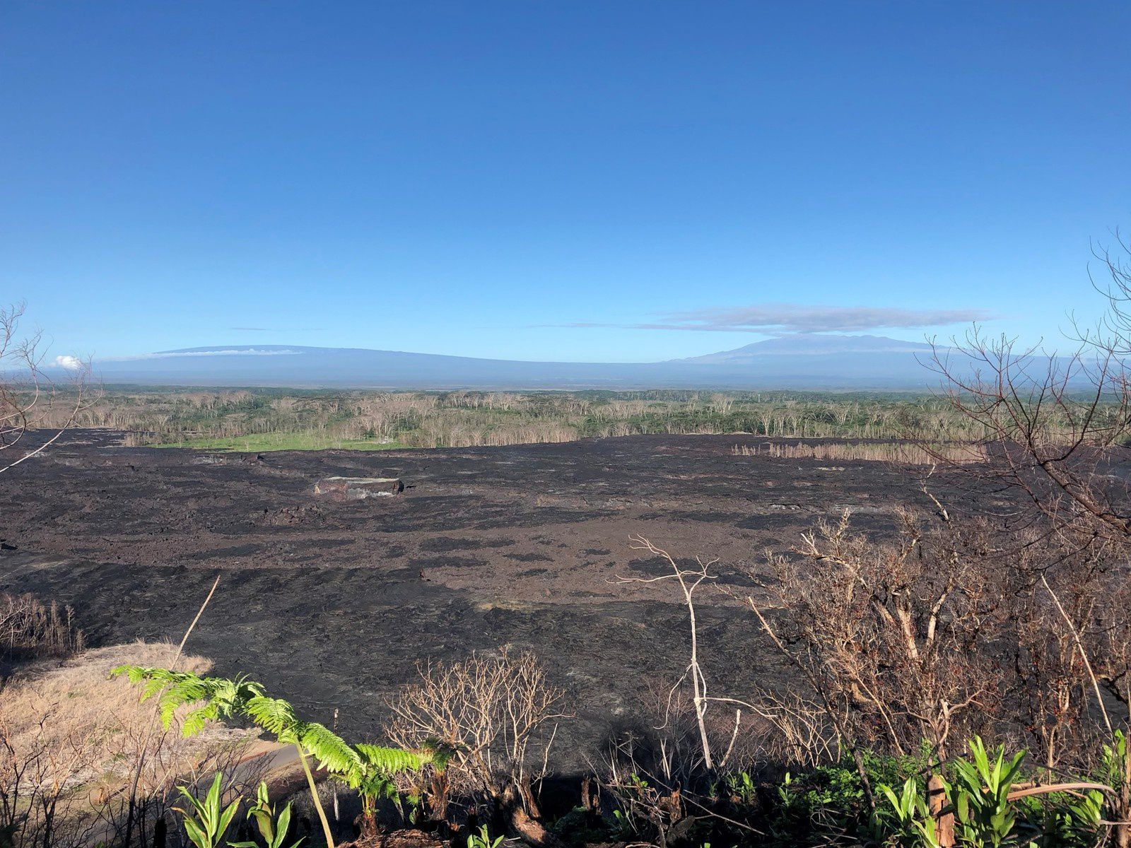 From the lava fields of the East Rift Zone, the view is clear, in absence of VOg on the MaunaLoa (on the left) and the Mauna Kéa (on the right) - photo 15.10.2018 HVO