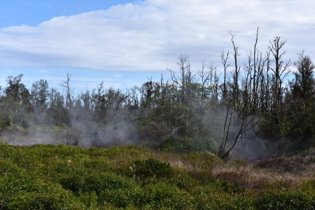 Kilauea East rift zone - Steam rises from a huge crack in the meadow behind Beverly Vance's house on Ala Ili Road. - photo Alan McNarie - Honolulu Civil Beat / 23.01.2019