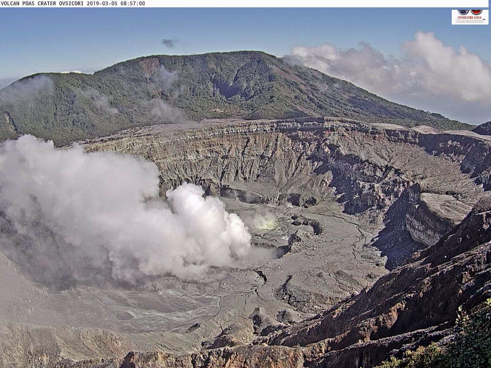 Poas - plume of gas and steam on 05.03.2019 / 8h57 - Ovsicori webcam