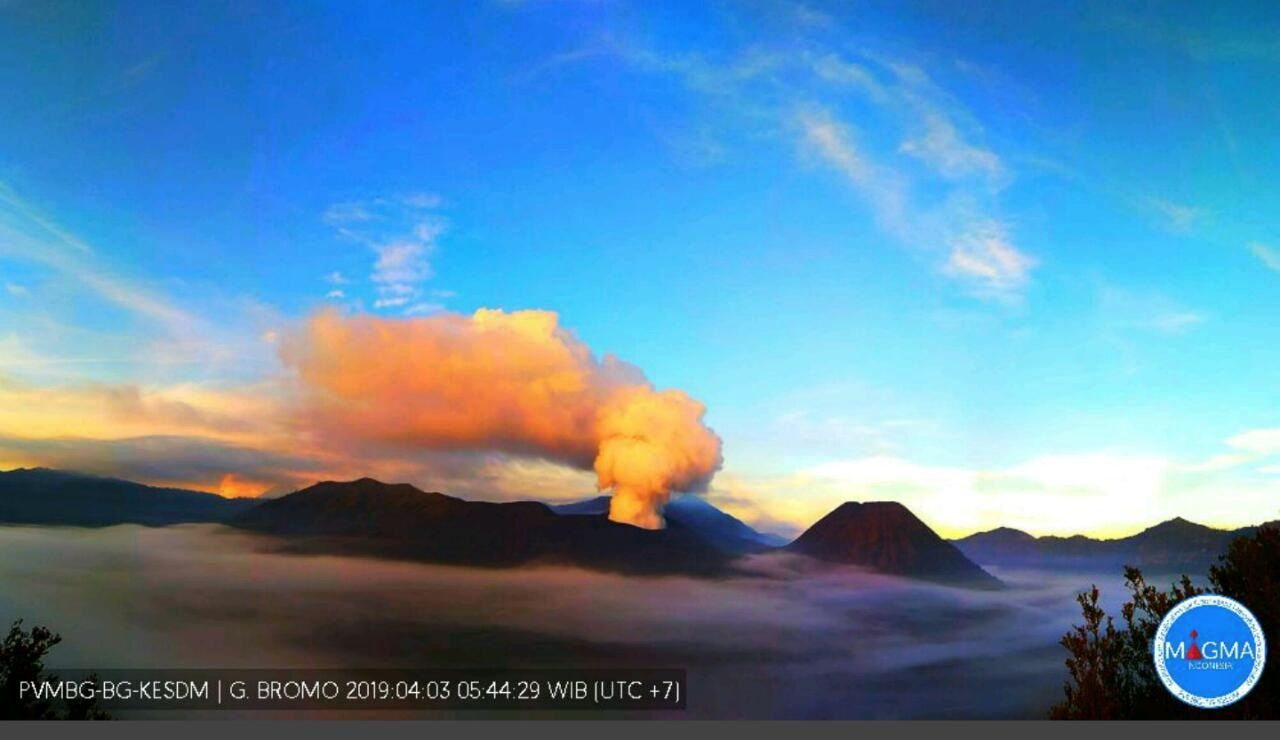 Bromo - gas plume colored by the rising sun - 03.04.2019 / 5h44 / PVMBG - Magma Indonesia
