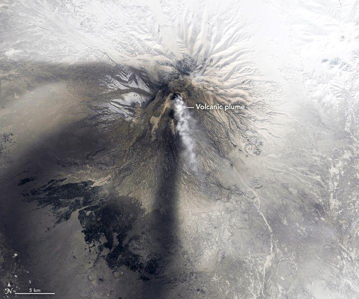 Sheveluch -image Landsat 8 OLI  / Nasa du 19.04.2019