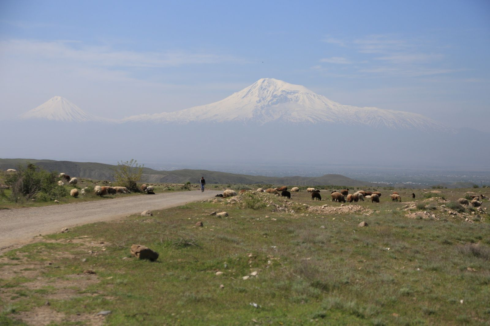The Great Ararat and the Lesser Ararat in a pastoral landscape - photo © Bernard Duyck 2019