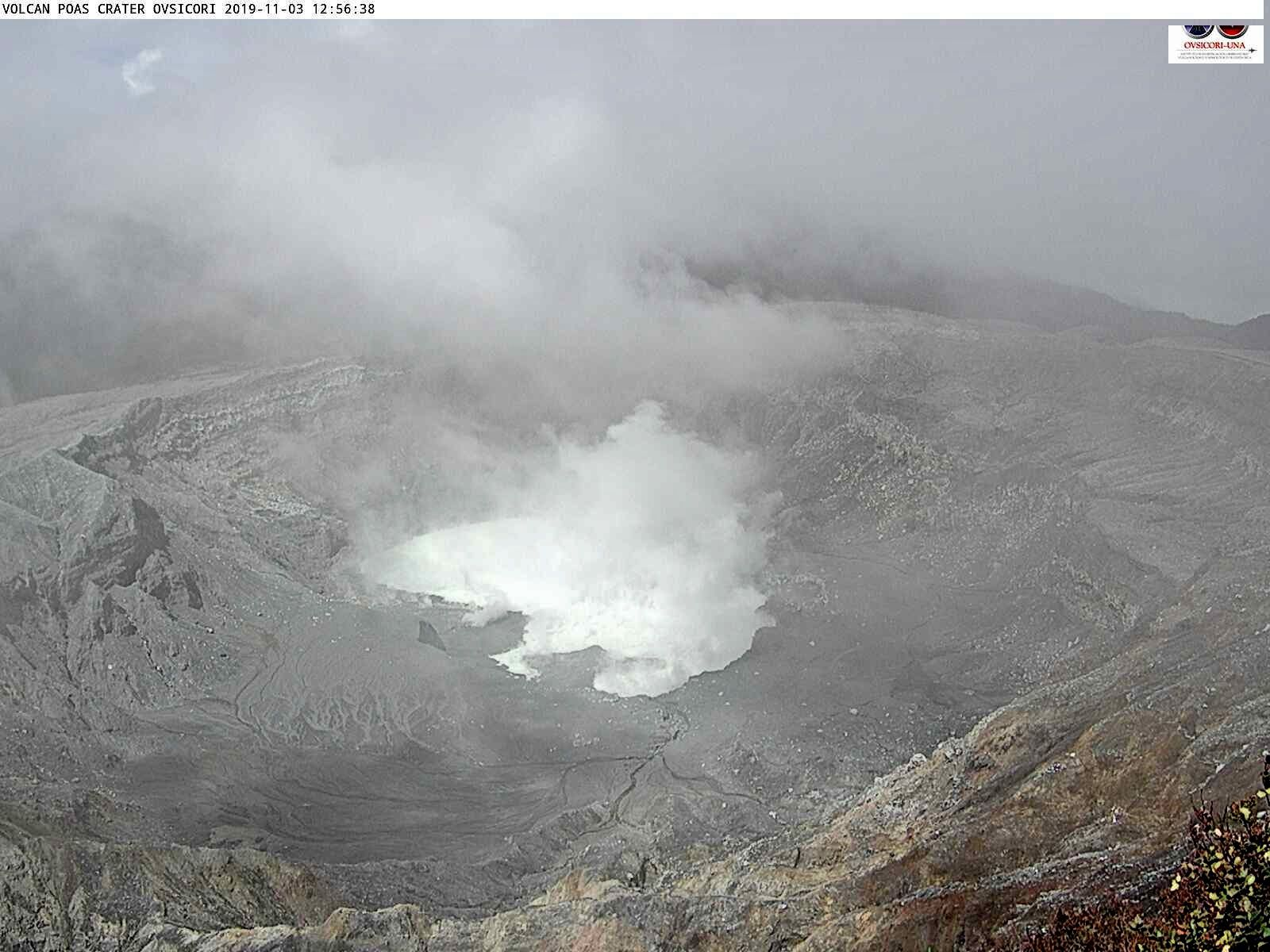 Poas - 03.11.2019 / 12h56 - the lake fills up gradually, with a decrease of fumaroles - bad visibility due to bad weather - webcam Ovsicori