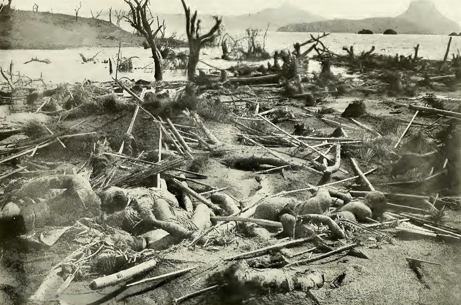 Taal - fatal eruption of 30.01.1911 - Gruesome photo from National Geographic / April 1912