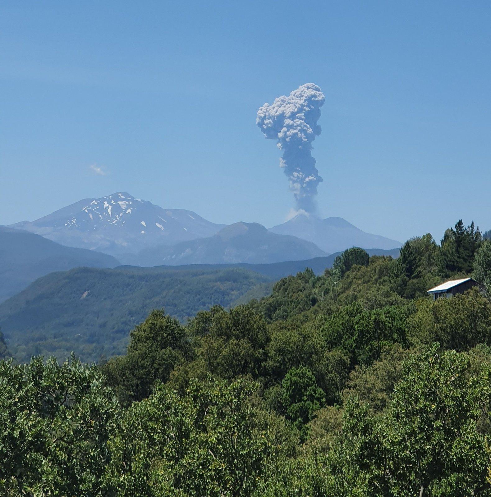 Nevados de Chillan - plume of ash and gas from 30.01.2020 / 13h56 loc. - photo Pablo Esquivels Twitter