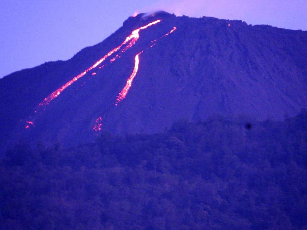 Pacaya - Deux coulées de lave d'environ 250 m. - photo Erikson Morales, Unidad de Prevención en Volcanes –UPV  / via Conred