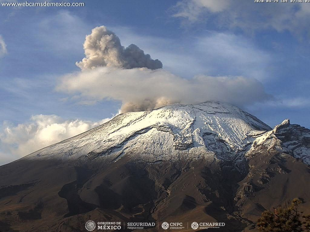 Popocatépetl - the exhalation of 04.29.2020 at 07.46 am, with its gray plume which contrasts with the white of the snowy summit - webcamsdeMexico