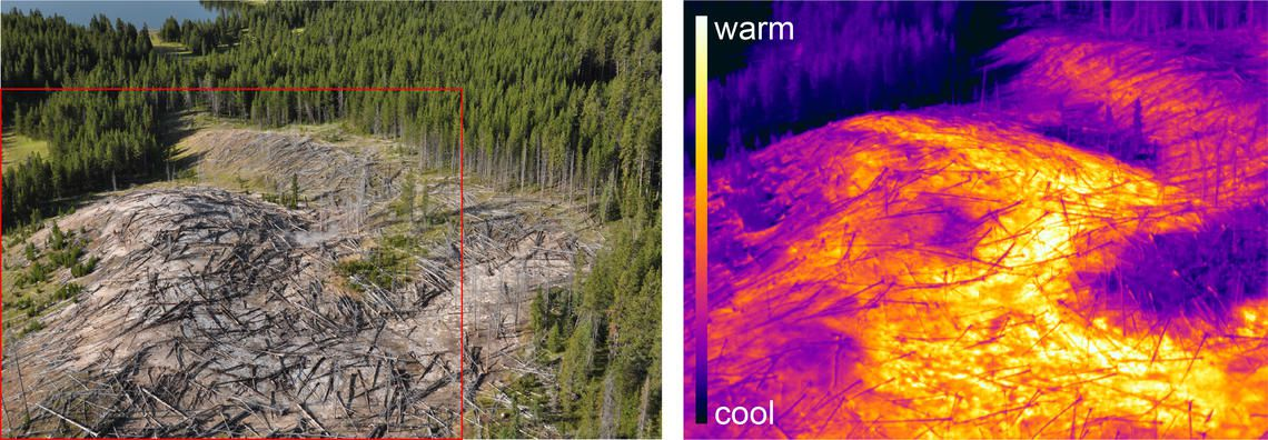 Yellowstone national Park - new thermal area of ​​Tern lake - FLIR image (IR) of the framed red area - Doc. M.Poland / YVO