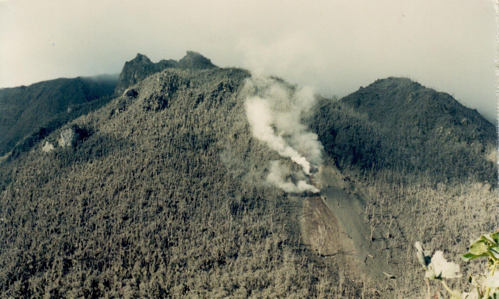 Montserrat - in 1995 at the very beginning of volcanic activity at the Soufriere Hills volcano - photo Alan Smith - Geologist. / MVO
