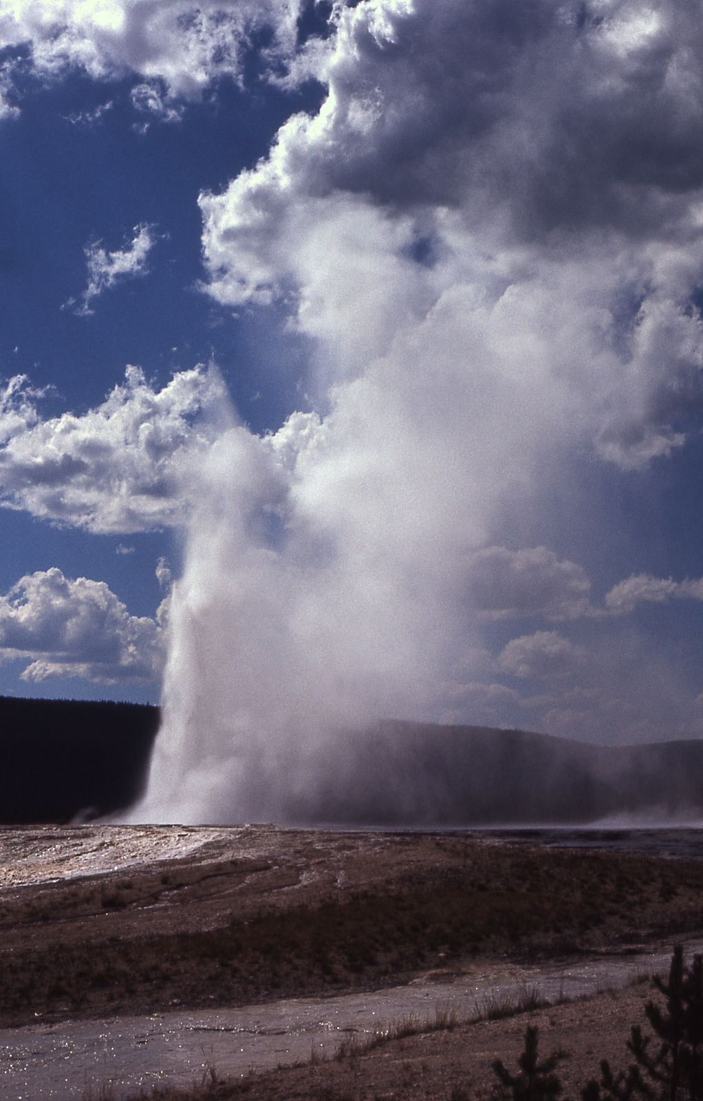 Yellowstone N.P. - Giantess Geyser - photo J.R. Douglass / NPS archives