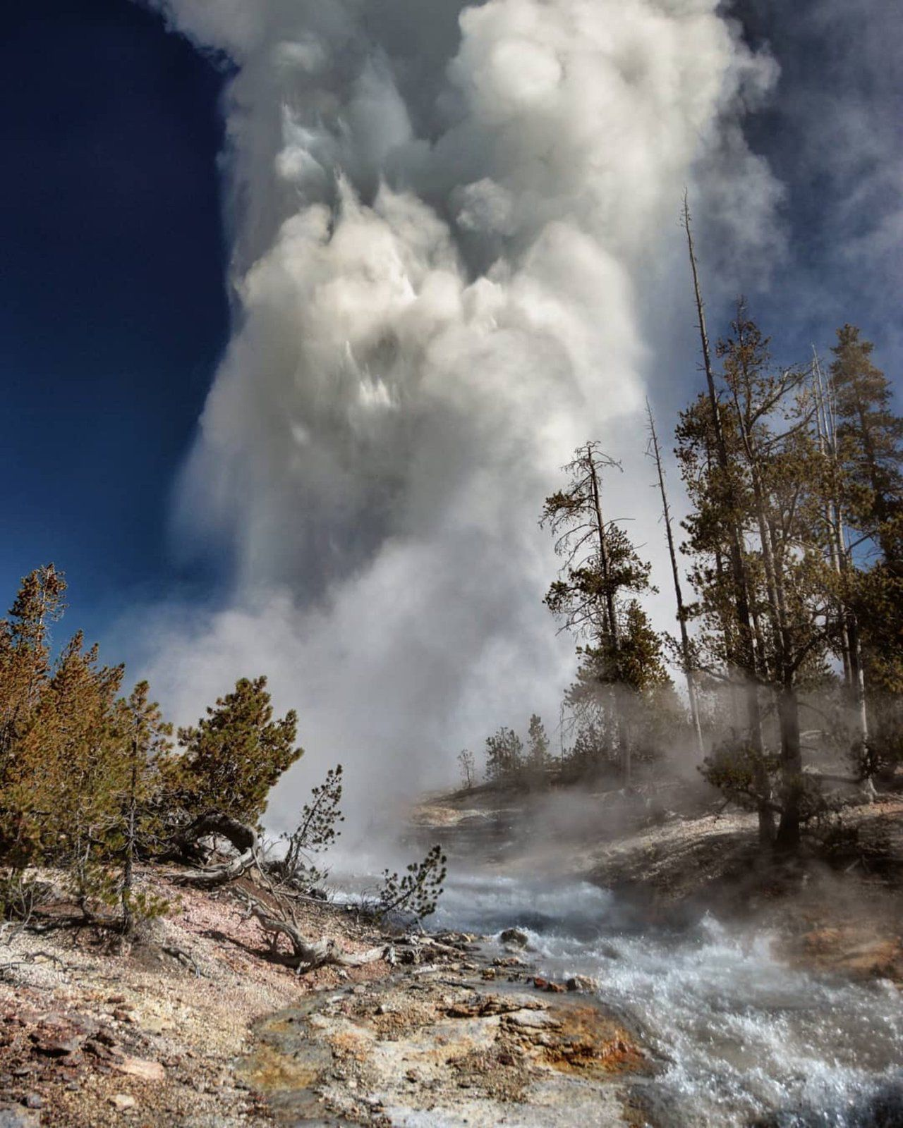 Yellowstone's Steamboat geyser eruption -photo Yellowstone for ever