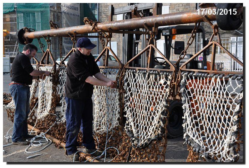 La pêche à la coquille se poursuit.