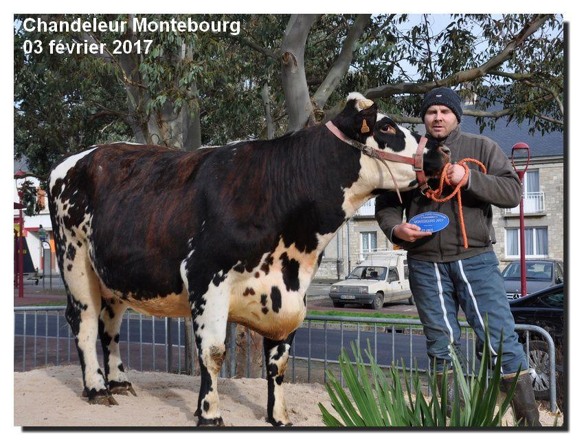 Montebourg : Ma chandeleur 2017