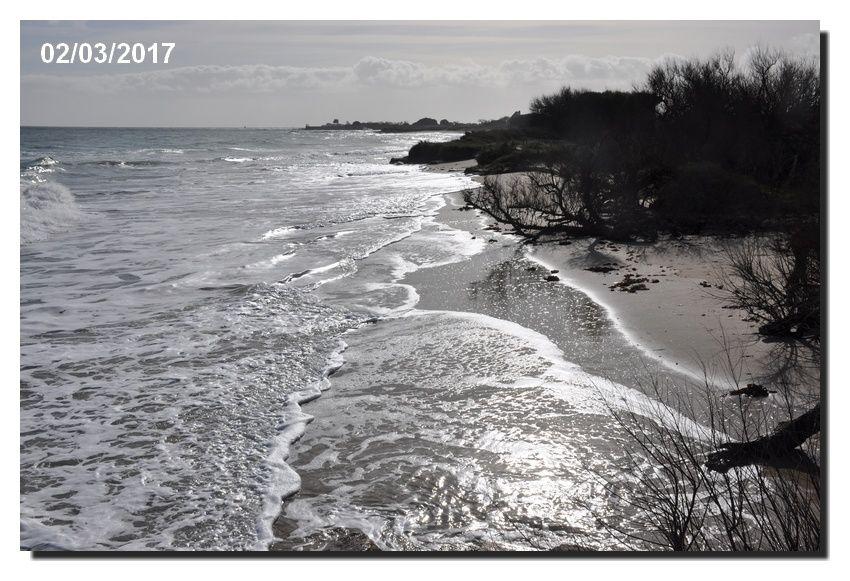 Un retour sur la côte