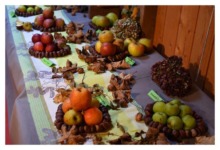 Sainte Mère Eglise, ferme-musée, exposition de pommes