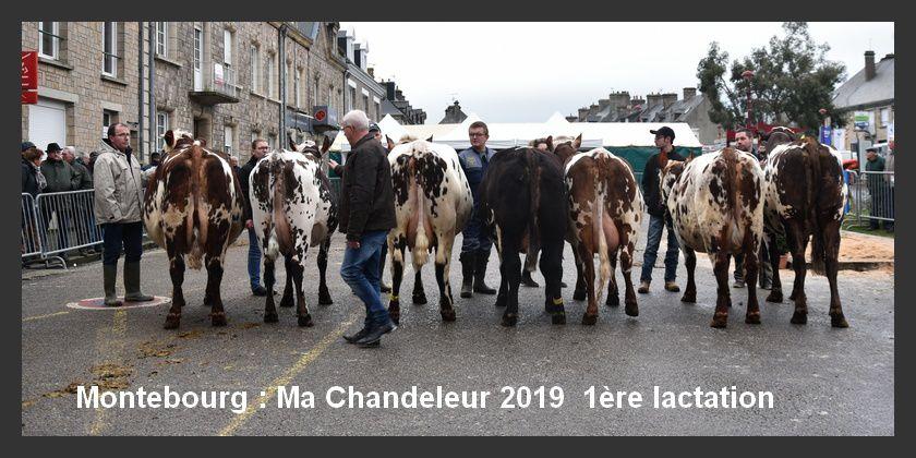 Montebourg, Ma Chandeleur 2019 (2/3)