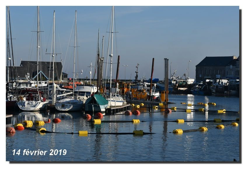 Dans le port de saint Vaast la Hougue