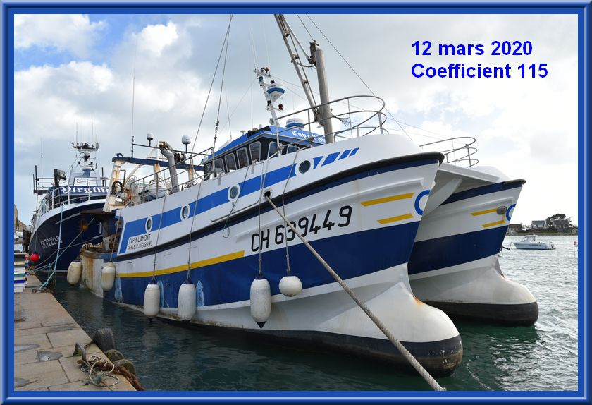 Coeff 115, des images de la grande marée
