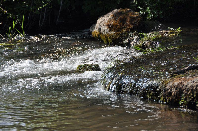 Escapade au bord de l'eau : la Sinope